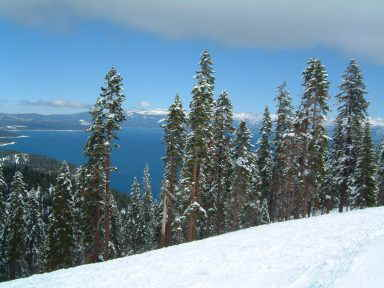 HOMEWOOD MOUNTAIN SKI RESORT -  compliments of Accommodation Tahoe